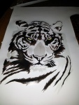 skin-macan