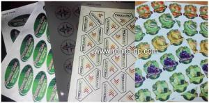 cetak sticker a3 fujixerox ronita dp