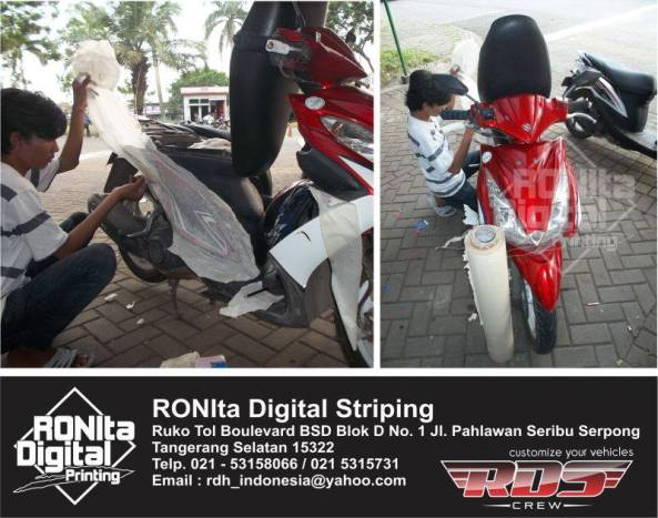 striping ronita