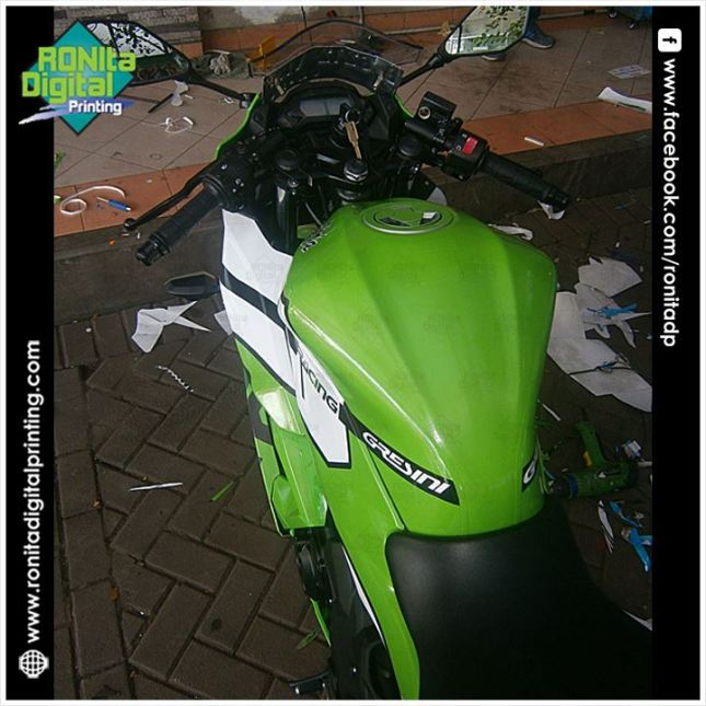 Kawasaki NINJA 250 fi go n fun 3