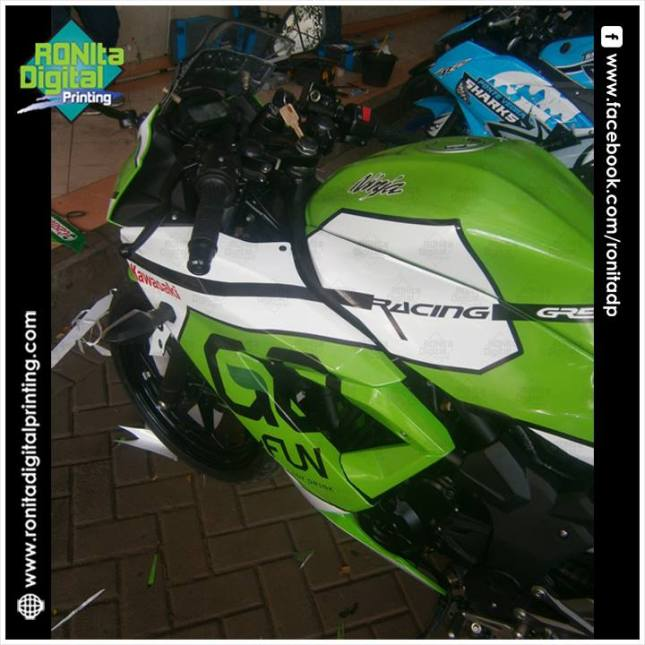 Kawasaki NINJA 250 fi go n fun 5
